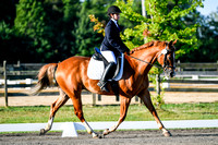 NODA Dressage Aug 13, 2017 South Farm 8am-9:49am break