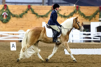 Chagrin Valley Jan 3, 2016 Dressage