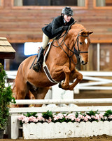 Chagrin Valley April 8, 2016 Hunter/Jumper