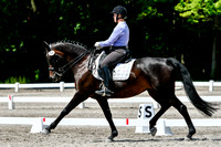NODA Dressage Schooling Show Ring 1 July 9, 2017 8AM-lunch