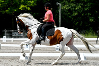 NODA Dressage July 8-9, 2017 Chagrin Valley Farms