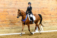 NODA Dressage Championship Chagrin Oct 8, 2017 8AM-lunch