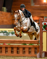 Chagrin Valley Farms Jan 18-21, 2018 hunter/jumper