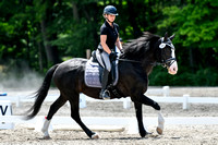 NODA Dressage Schooling Show Ring 1 July 9, 2017 lunch-end