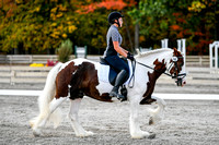NODA Open Dressage Chagrin Oct 7, 2017 1:30PM-3:21PM-break