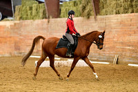 Jan 08, 2017 Dressage Group 1 8am -10:24am