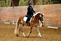 Jan 08, 2017 Dressage Group 4 4:14pm-5:27pm
