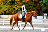 NODA Open Dressage Chagrin Oct 7, 2017 10:27AM-lunch
