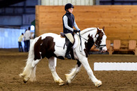Chagrin Valley Nov 1, 2015 Dressage schooling