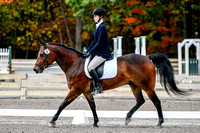 NODA Open Dressage Chagrin Oct 7, 2017 8:00AM-10:08AM break