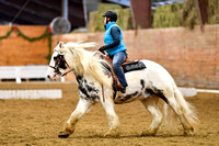 Jan 08, 2017 Dressage Group 2 10:39am-12:30pm